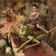 The boy goes on a grasshopper — 图库照片