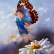 Elf  girl with wings — Stock Photo