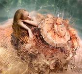 Mermaid girl sleep — Stock Photo