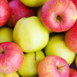 Stock Photo: Red and green apples