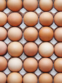 Eggs — Stock fotografie