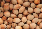 Hazel-nuts — Stock Photo