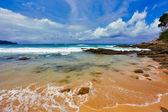 Stones tropical beach — Stock Photo