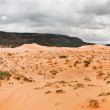 Coral Pink Sand Dunes — Stock Photo #1591733