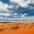 Coral Pink Sand Dunes — Stock Photo #1591752