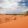 Coral Pink Sand Dunes — Stock Photo #1591778