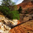Stock Photo: Reliefs of Zion Canyon