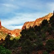 In Zion Canyon — Stock Photo