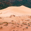 Coral Pink Sand Dunes — Stock Photo #1598720