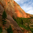 Royalty-Free Stock Photo: In Zion Canyon
