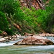 Stock Photo: River in Zion Canyon