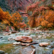 River in Zion Canyon — 图库照片
