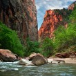 River in Zion Canyon — Stock Photo #1598984