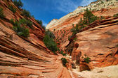 Reliefs of Zion Canyon — Stock Photo
