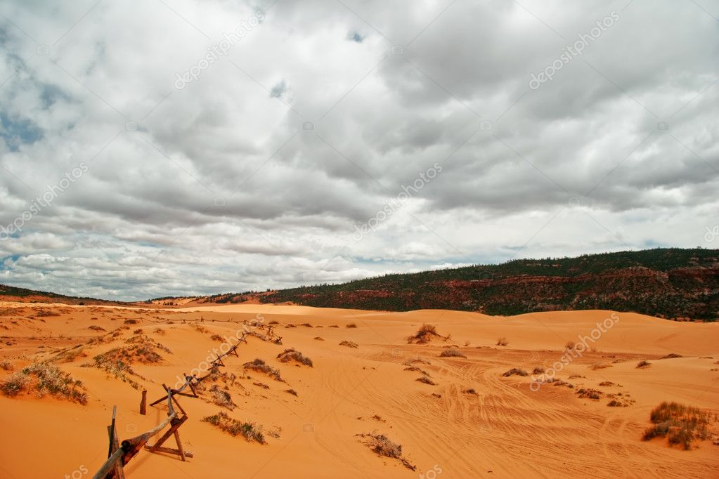 Coral Pink Sand Dunes State Park is a Utah state that features coral-hued sand dunes located beside red sandstone cliffs — Stock Photo #1598737