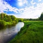 Green field near the river — Stock Photo