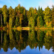 Autumnal lake — Stock Photo #1605888