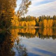 Autumnal lake — Stock Photo