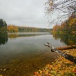 Autumnal lake — Stock Photo #1606006