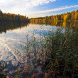 Autumnal lake — Stock Photo #1606014