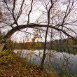 Autumnal lake — Stock Photo #1606107