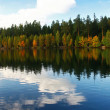 Autumnal lake — Stock Photo #1606194
