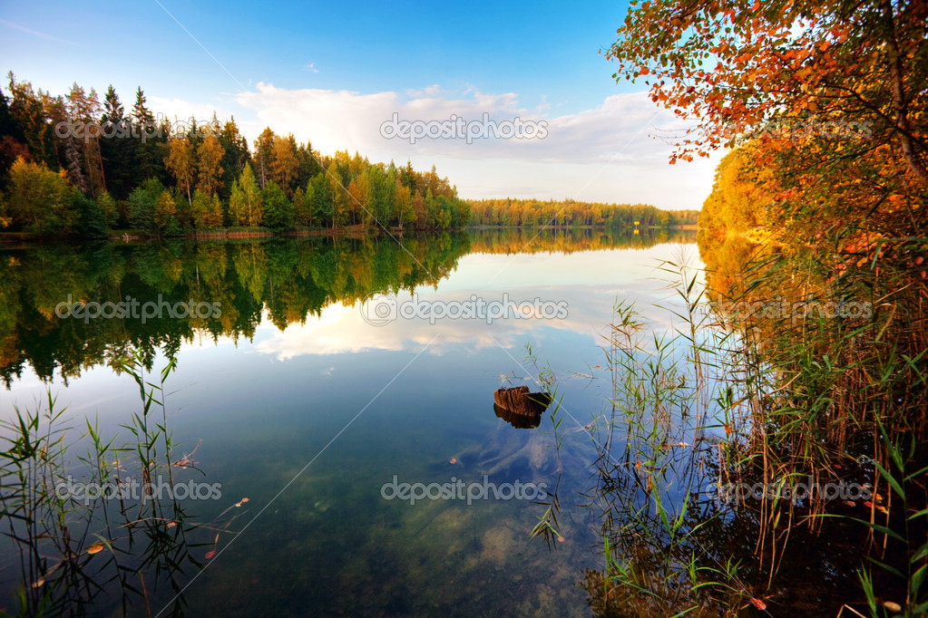 Sunny autumnal  lake in the forest — Foto Stock #1602105