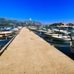 Boats near the pier — Stock Photo #1618487