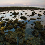 Sunrise on Bali island — Stock Photo #1618608