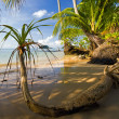 On the tropical beach - Stock Photo