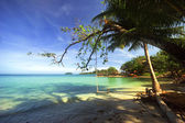 On the tropical beach — Stock Photo