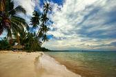 Sur la plage tropicale — Photo