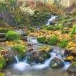 Beautiful cascade waterfall in autumn fo — Stock Photo