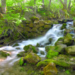 Beautiful cascade waterfall in green for - Stock Photo