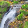 Beautiful waterfall in autumn forest — Stock Photo