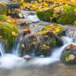 beautiful cascade waterfall in autumn fo — Stock Photo