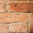 Brick wall texture — Stock Photo #1616490