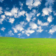 Green hill under blue cloudy sky whit su — Stock fotografie