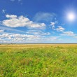 Field under blue cloudy sky whit sun — Stock Photo