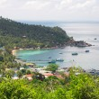 To tao island, thailand - Stock Photo