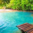 Emerald Pool. Krabi, Thailand - Stock Photo