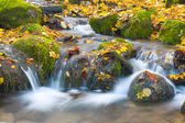 Beautiful cascade waterfall in autumn fo — ストック写真