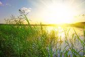 Beautiful lake on sunset — Stock Photo