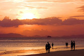 Peoples on beach look to sunset — Stock Photo