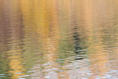Reflection of autumn forest on water — Stock Photo