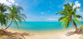 Panoramic tropical beach with coconut pa — Zdjęcie stockowe