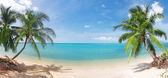 Panoramic tropical beach with coconut pa — Stock Photo