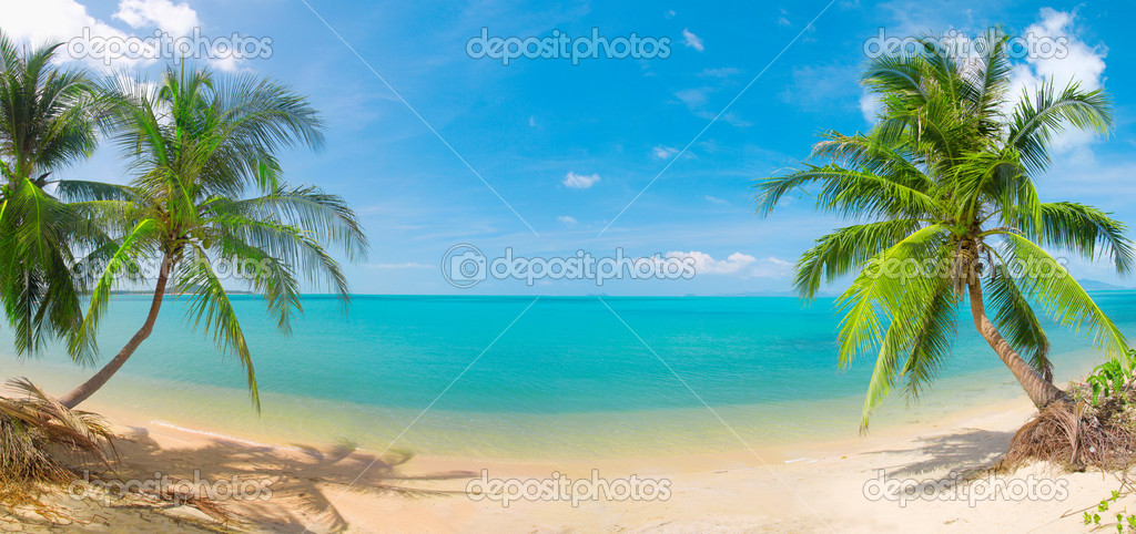 Panoramic tropical beach with coconut palm — Photo #1617092