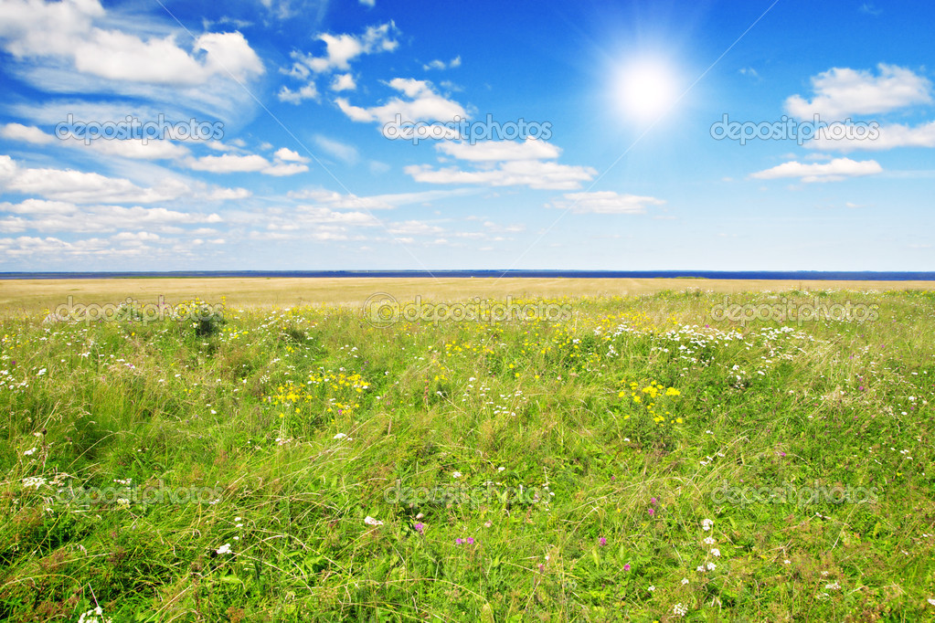 Green hill under blue cloudy sky whit sun — Stock Photo #1617409