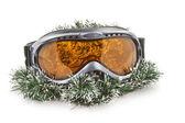 Ski glass — Stock Photo